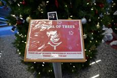 Click to view album: 2017 Festival of Trees