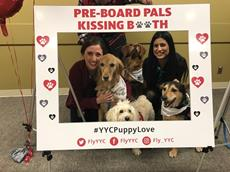 Click to view album: Team YYC Valentine's Puppy Room